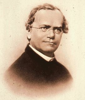 Orden De San Agustín Fr Mendel